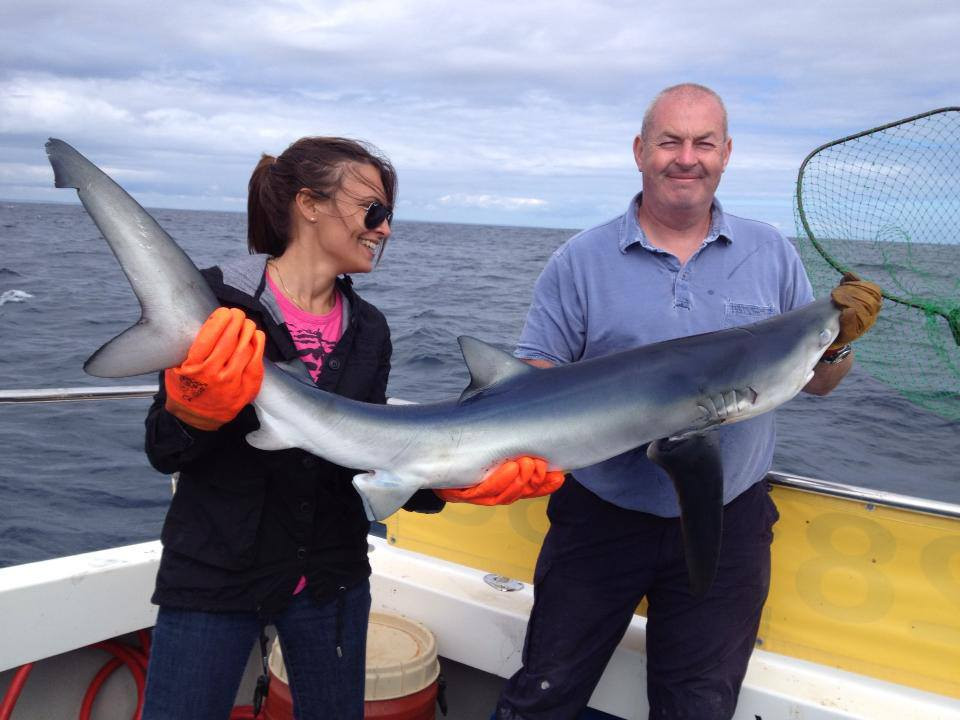 Shark fishing off West Cornwall